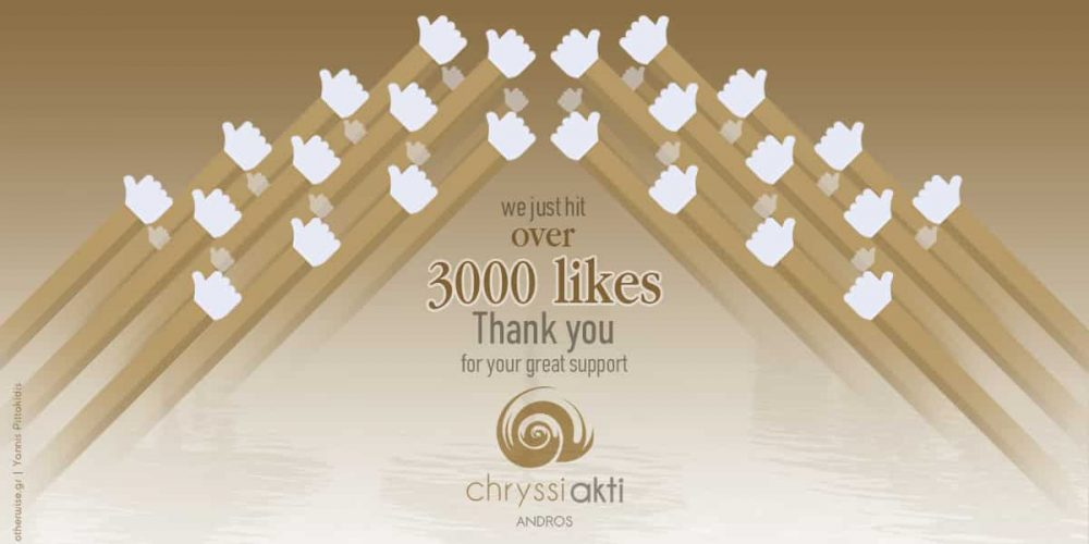 Celebrating 3,000 Facebook likes milestone